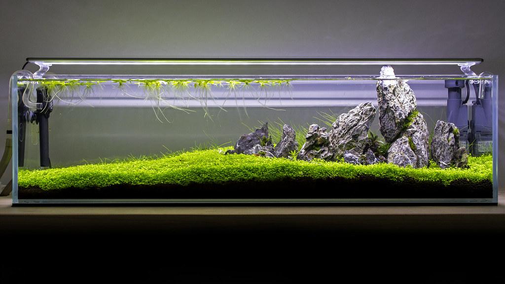 90cm Bookshelf Aquarium