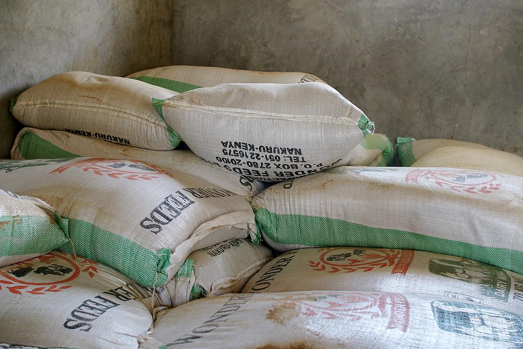 global agenda visit to ol kalou  animal feeds