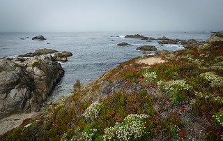 Carmel-by-the-Sea | by Richard Cleaver