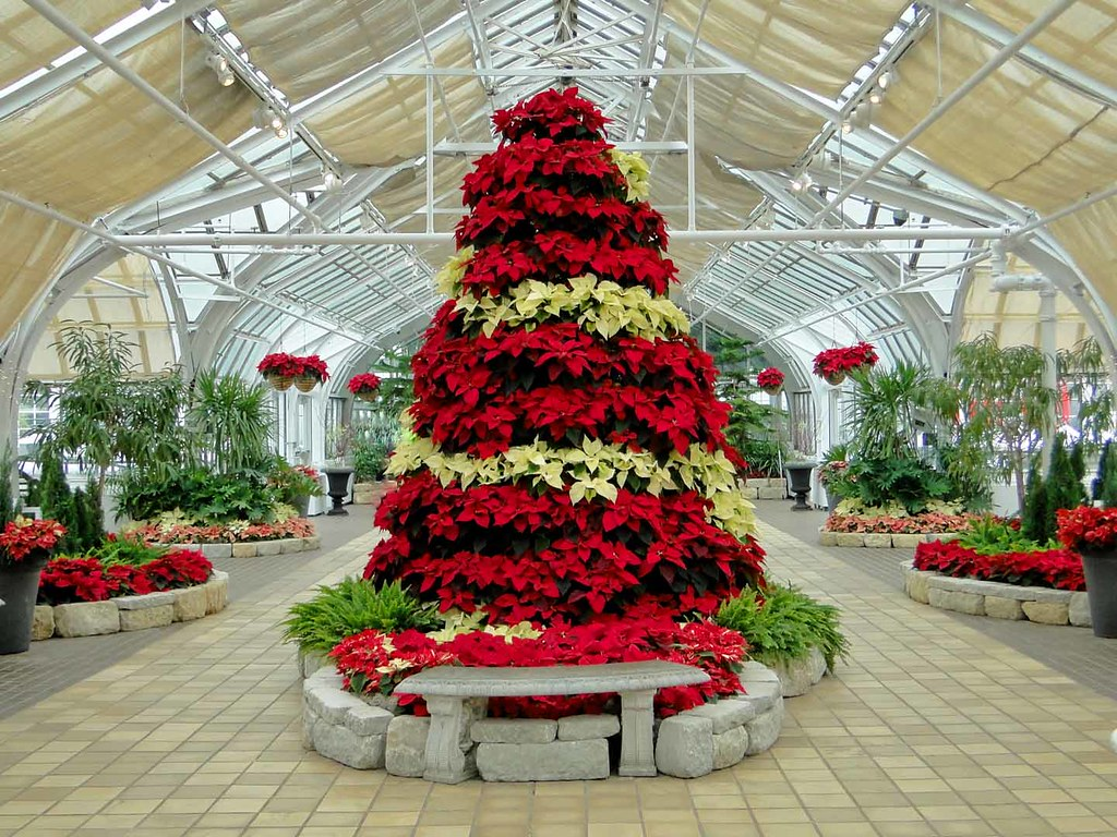 ... Franklin Park Conservatory | By Maia C