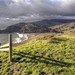 Meander in Marin