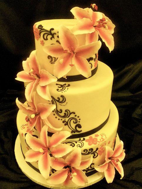 Flour cake studio celebrity