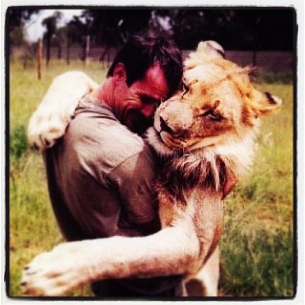 lion and human love සඳහා පින්තුර ප්රතිඵල