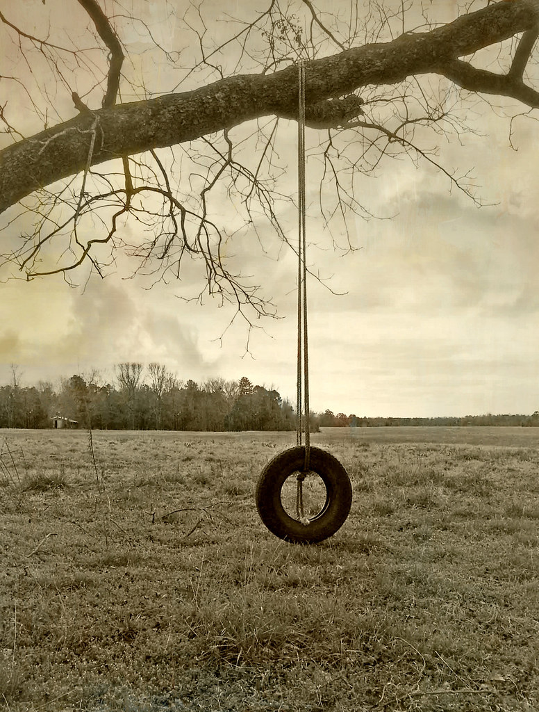 North The Old Tire Swing in