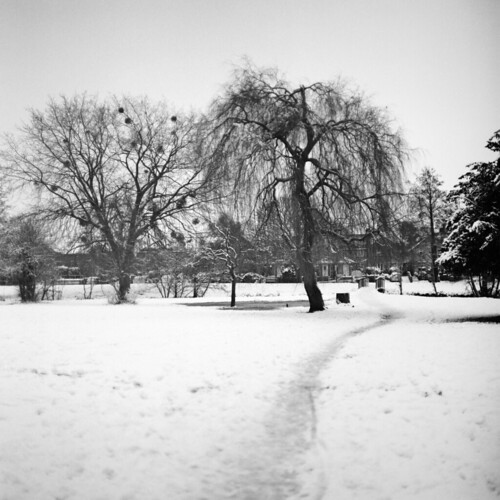 Snowy park path | by Skink74