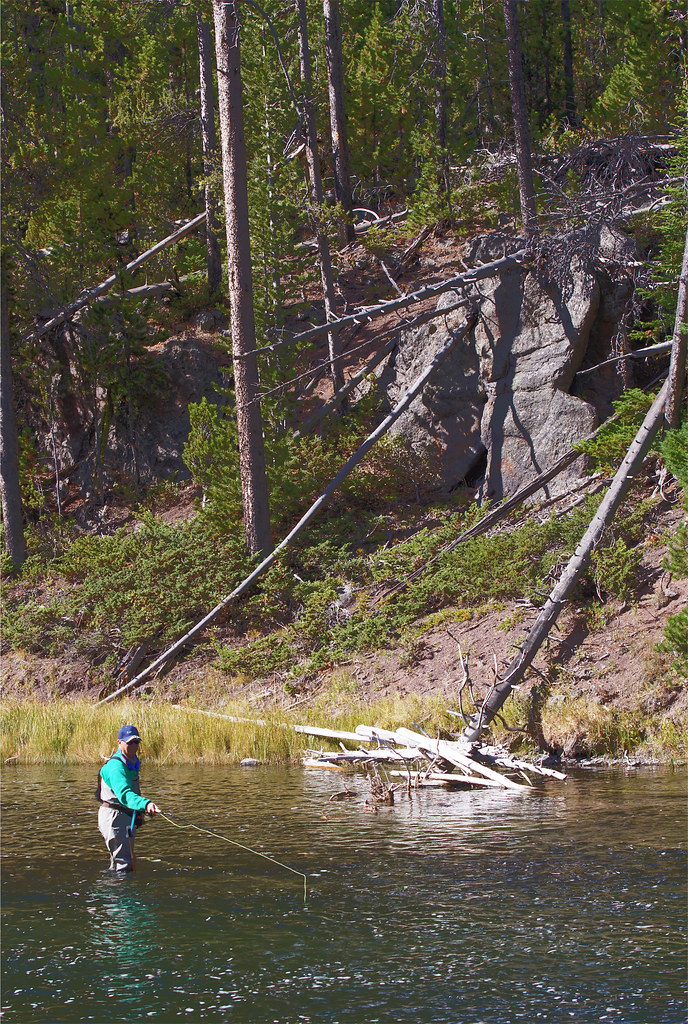 Fly fishing in yellowstone national park and so it begins for Yellowstone fly fishing