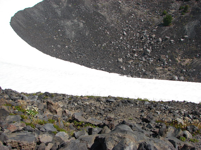 Snow field along the Mt. Bailey Trail