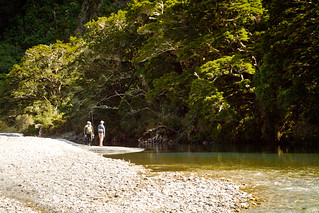 Guided New Zealand Fly Fishing | by caddiseug