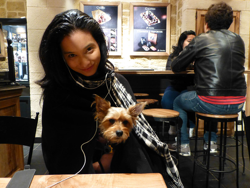 dog in restaurant in France