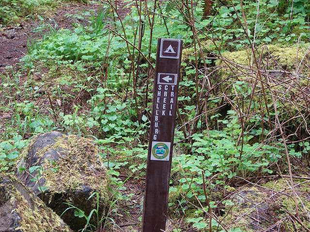 Shellburg Creek Trail sign