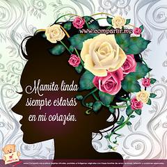 Frases De Amor Imagen Con Frase Corta Para Una Madre Fall Flickr