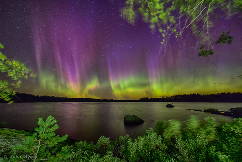Northern Lights at Puula - Highlight from last night