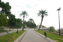 Take a walk in the Karaalioglu park - Things to do in Antalya