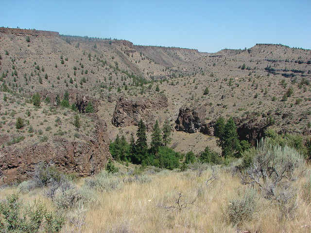Wychus Creek Canyon
