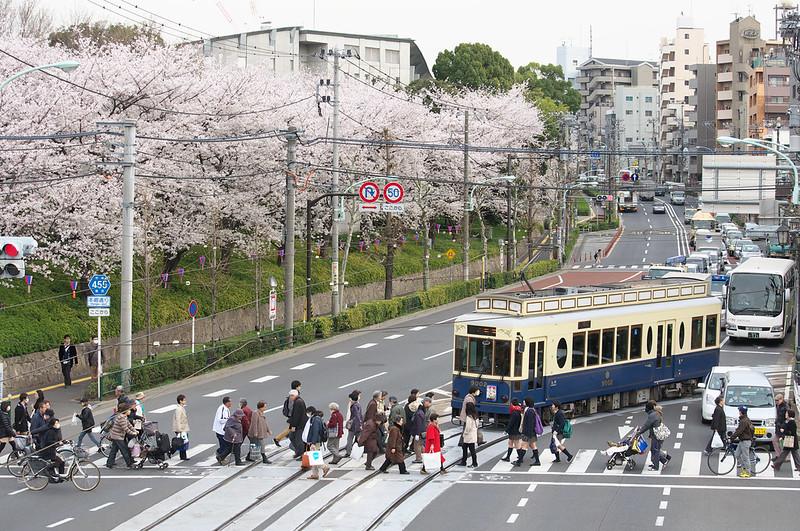 桜咲く都電荒川線沿線風景
