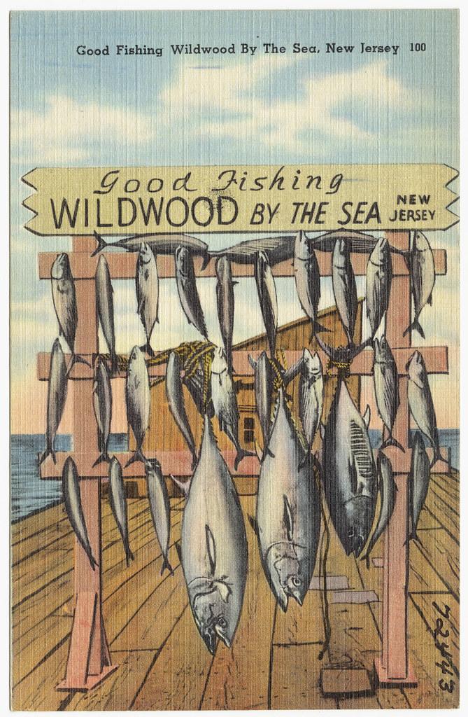 Good fishing wildwood by the sea new jersey file name for Fishing wildwood nj