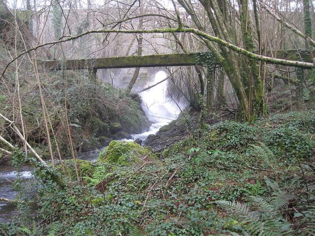 Río Zamáns en Vigo