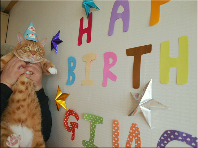 Ginger Cat Birthday Cake