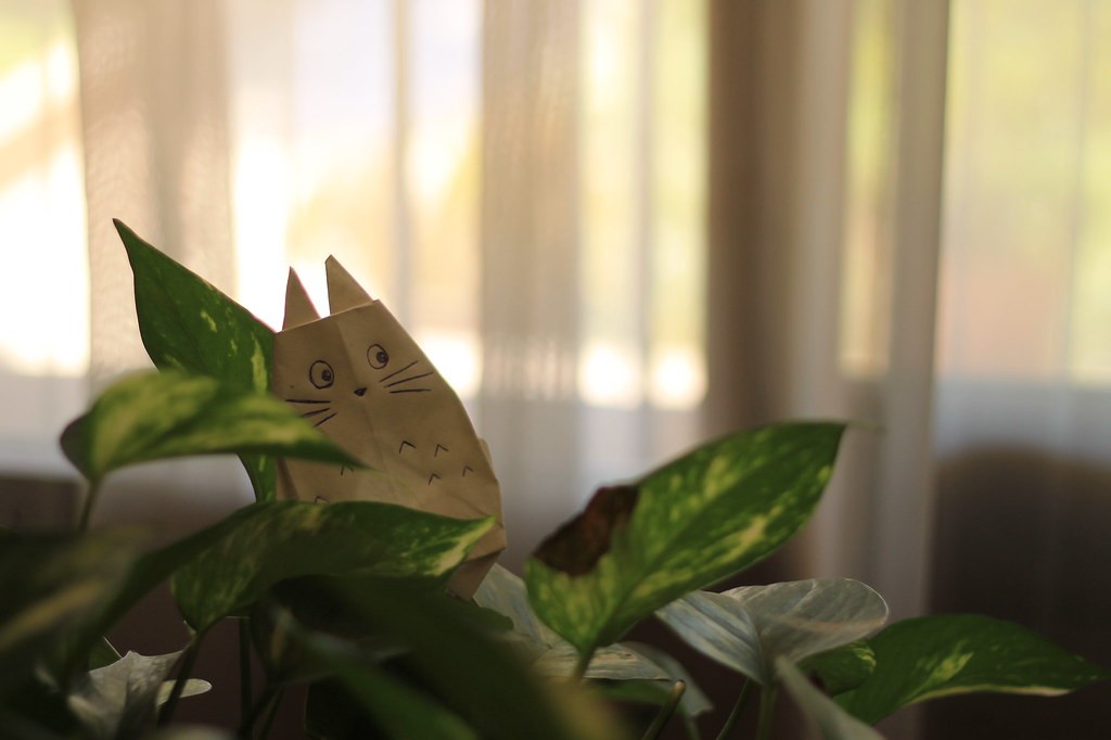 Origami Totoro | I'm visiting a friend, and she show me a