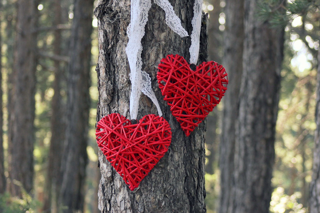 Red Willow Hearts Set Of 2 Hearts With Lace Wicker Hea