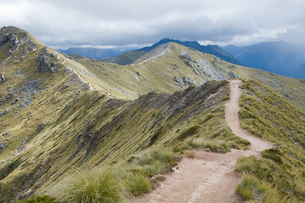 Kepler Track - The Ridgeline | Hiking the saddles of the ...
