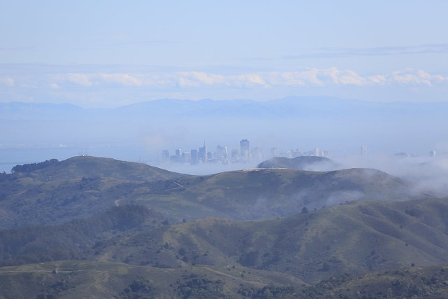 fog machine city