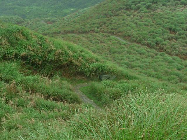 魚路古道透過國家公園保存,維護良好景觀。攝影:廖靜蕙。