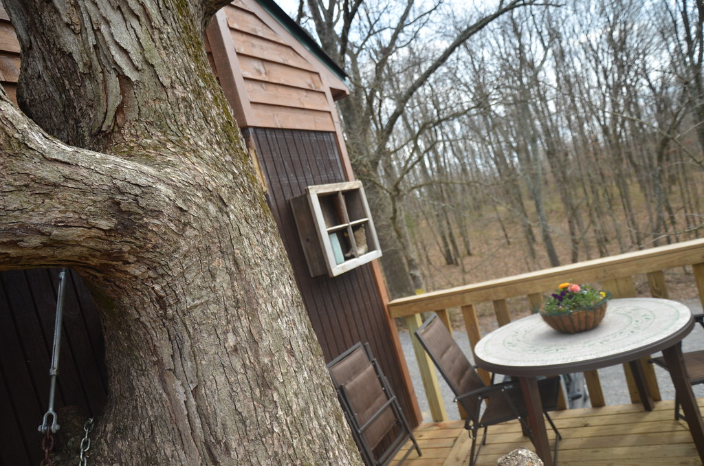 cabins in southern illinois