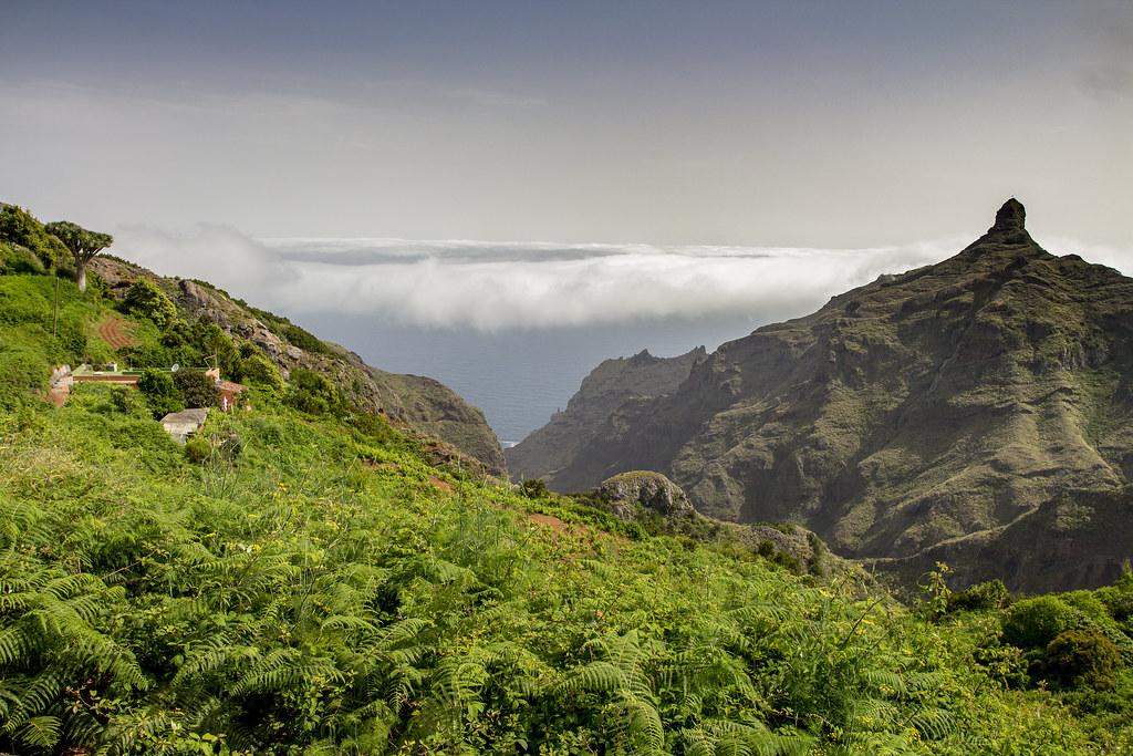 Taborno landscape - Anaga, Tenerife