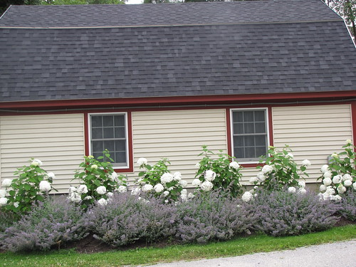 Landscaping On Side Of House : Ideas for landscaping on side of house pdf