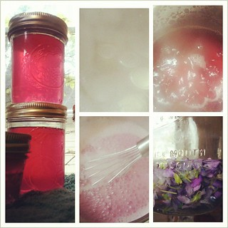 Violet jelly, check. Tastes as lovely as it looks. | by DanaK~WaterPenny