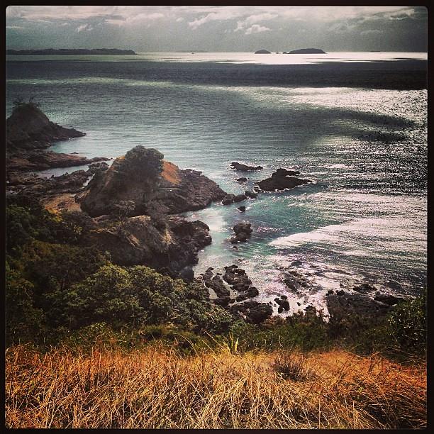 Nth Island - New Zealand