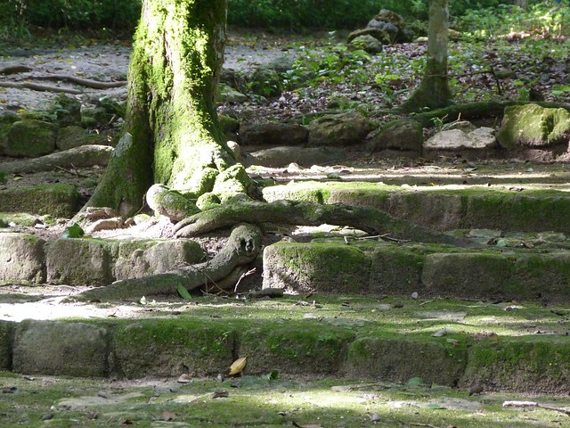 Escalera maya