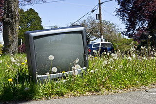 Dumped old TV | by Ruocaled