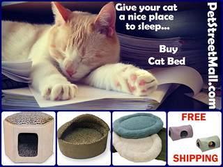 Buy Cat Bed Today | by The Pet Saver