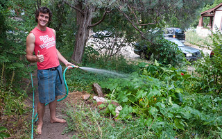 Watering the Garden | by Zane Selvans