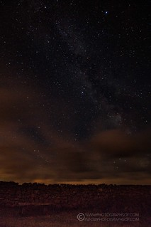 Stars (25 photos)