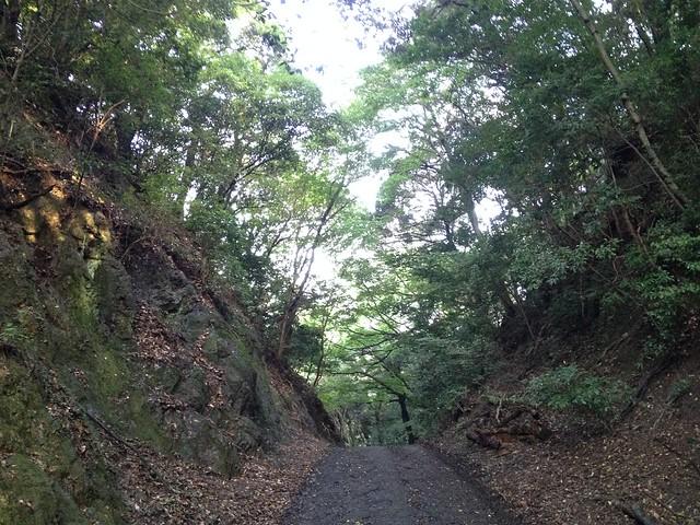 金華山 七曲峠 遊歩道