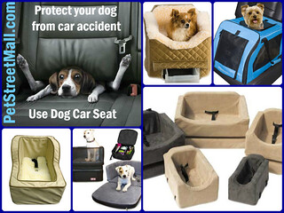 Cheap Dog Car Seats | by The Pet Saver