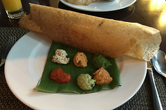 Bangalore - JW Marriot JW Kitchen Dosa 4