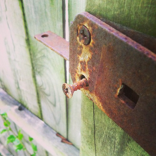 Not too good to reuse rusty hinges in the back jungle | by williac