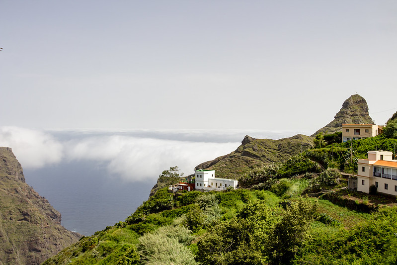 Taborno - Anaga Mountains - Tenerife