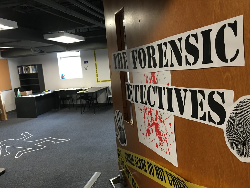 The Forensic Detectives Summer Camp 2016