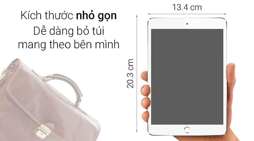 iHub Tuấn Anh - iPad Mini 4