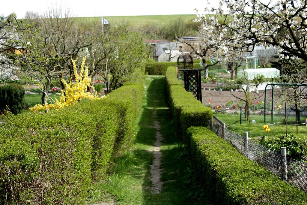 Nb umgehungsstrasse img 1608 kleingartenanlage gute for Garten neubrandenburg