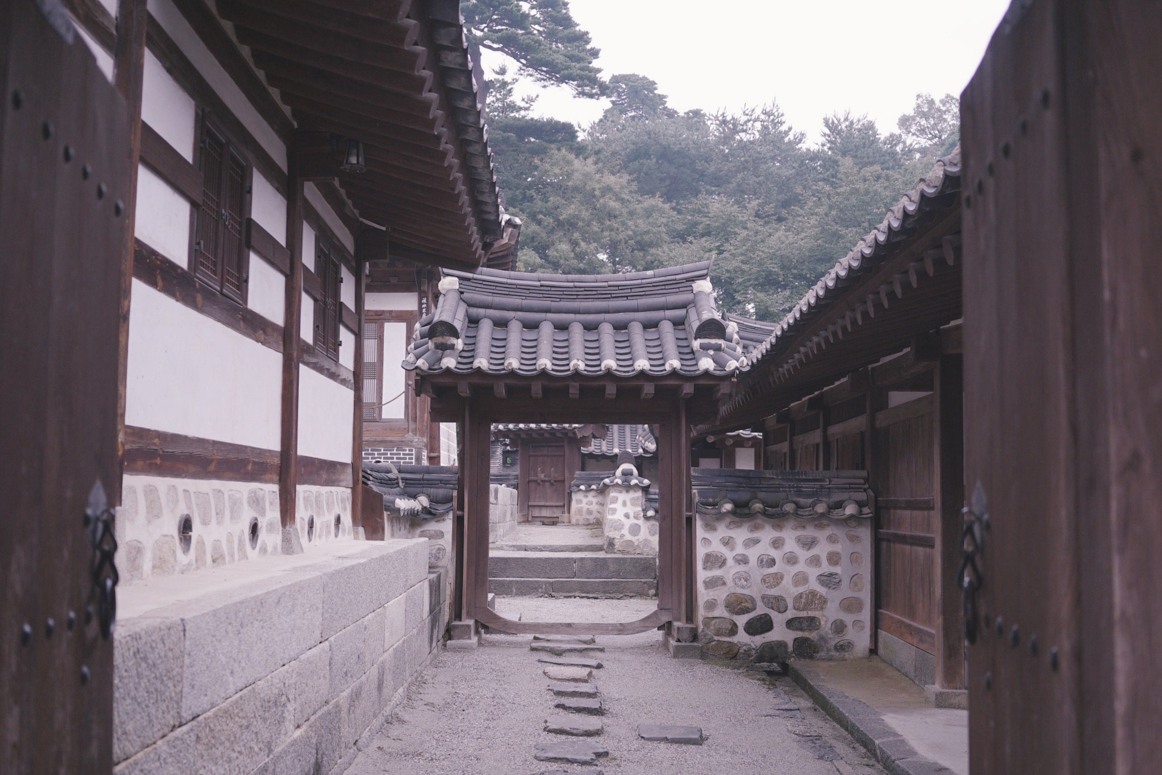 IMG_9264