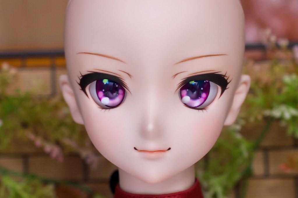 DDH-09(N)Sc-pi-head-1