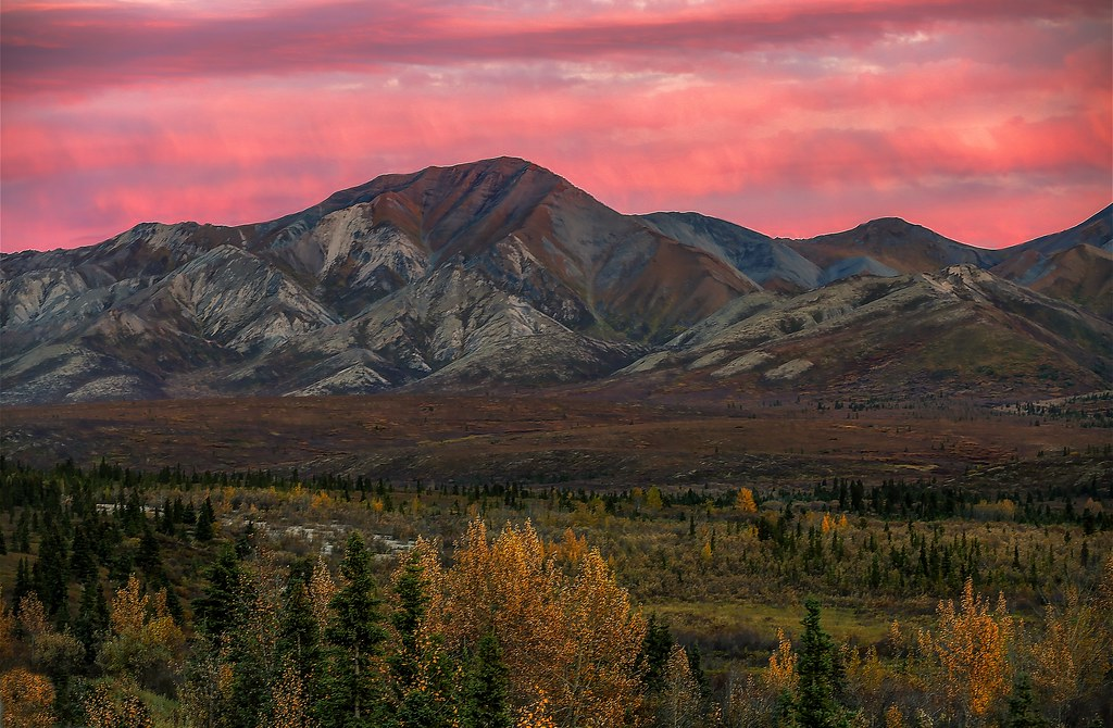 denali national park asian personals Interactive and printable 99755 zip code maps, population demographics, denali national park ak real estate costs, rental prices, and home values.