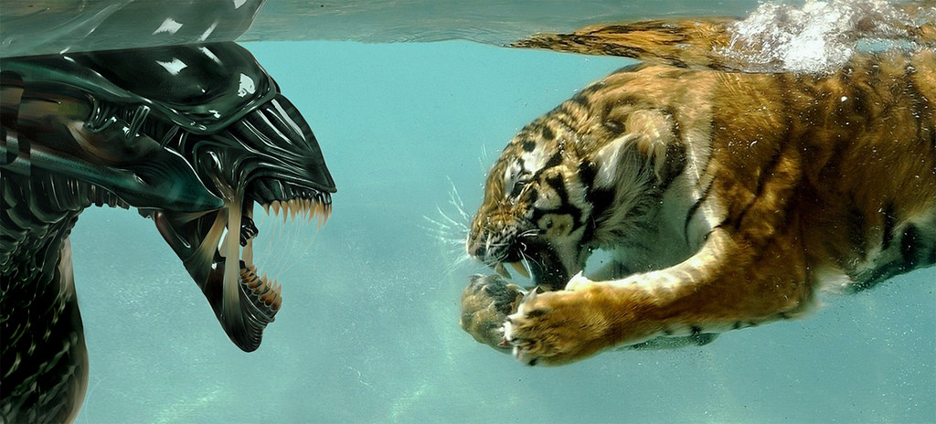 How To Win >> Alien vs. Tiger   Who would win?   seeviewer   Flickr