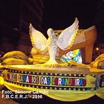 CANARIOS DAS LARANJEIRAS - 2016